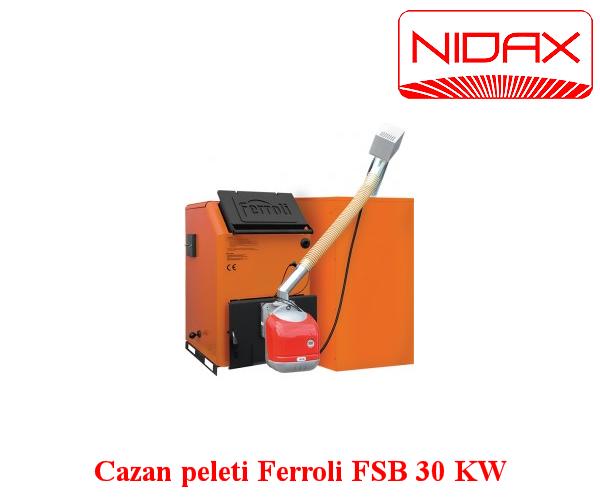 Cazan din otel pentru combustibili solizi (ecologigi sau conventionali)FSB 30 KW cu arzator pe peleti