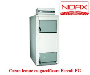 poza Cazan lemne cu gazeificare Ferroli FG